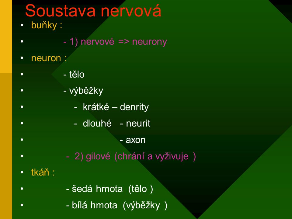 Soustava nervová buňky : - 1) nervové => neurony neuron : - tělo