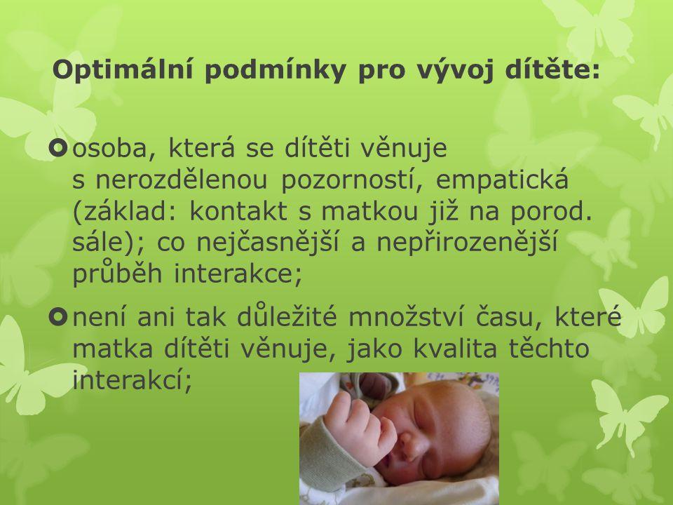 Optimální podmínky pro vývoj dítěte: