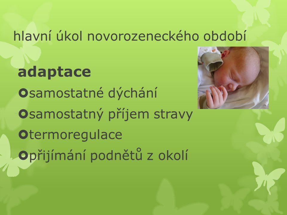 hlavní úkol novorozeneckého období