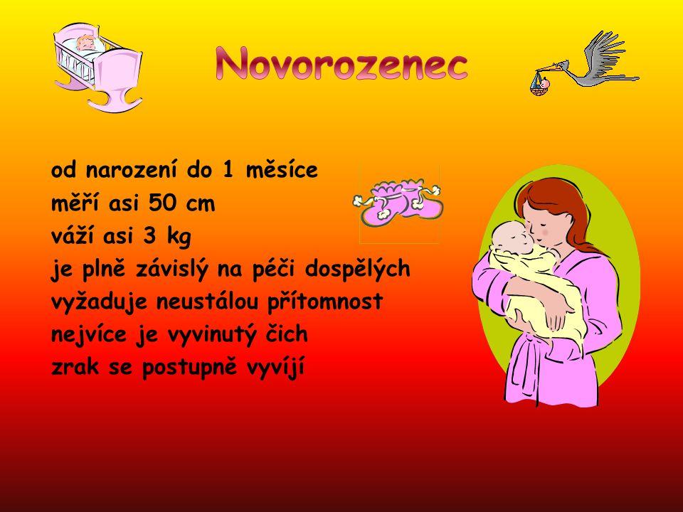 Novorozenec od narození do 1 měsíce měří asi 50 cm váží asi 3 kg