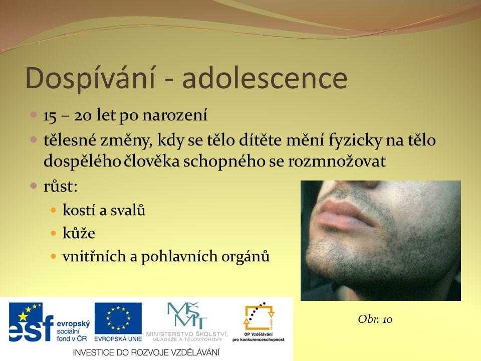 Dospívání - adolescence