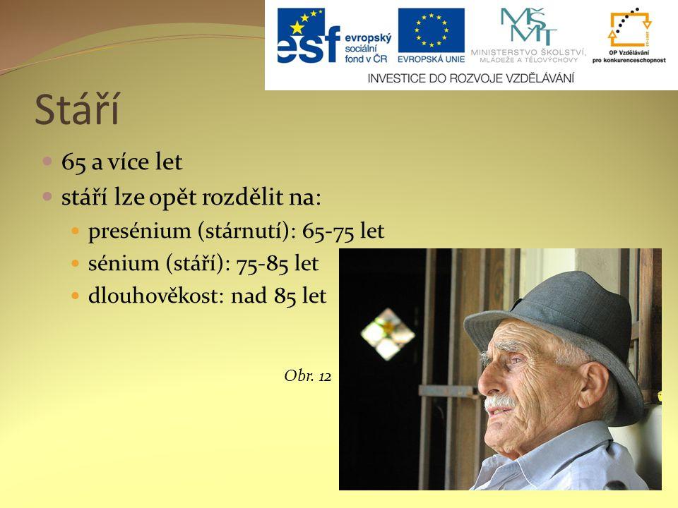 Stáří 65 a více let stáří lze opět rozdělit na: