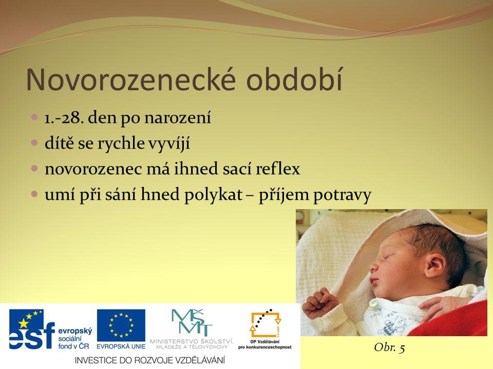 Novorozenecké období 1.-28. den po narození dítě se rychle vyvíjí