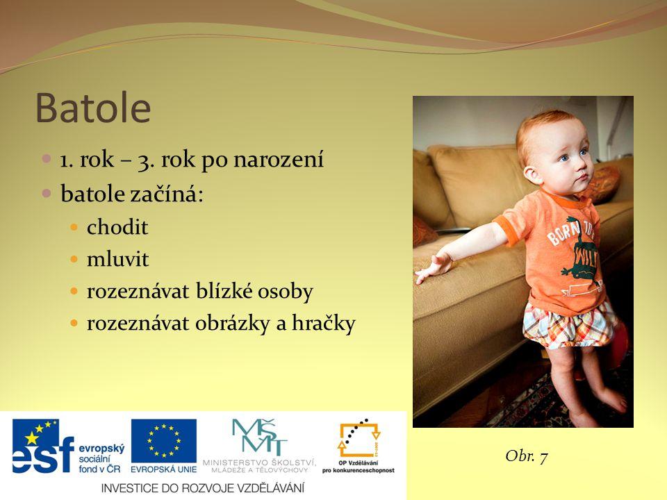 Batole 1. rok – 3. rok po narození batole začíná: chodit mluvit