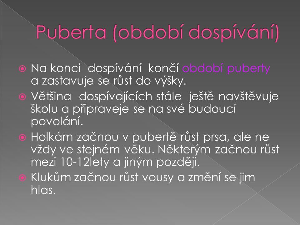 Puberta (období dospívání)