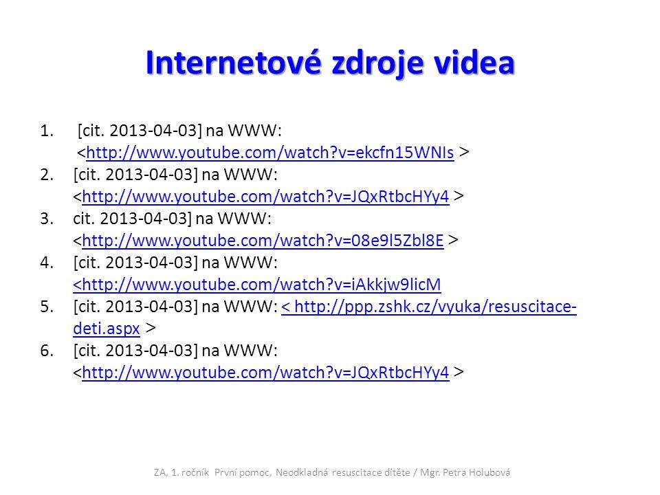 Internetové zdroje videa