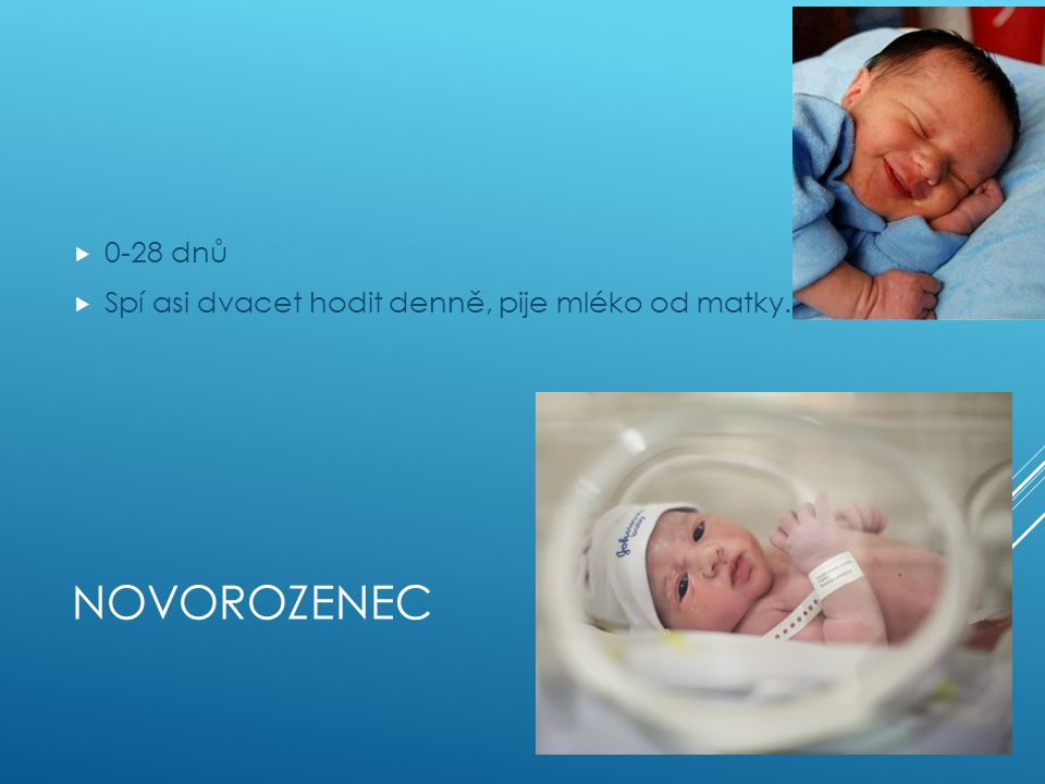 0-28 dnů Spí asi dvacet hodit denně, pije mléko od matky. Novorozenec