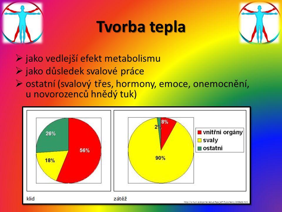 Tvorba tepla jako vedlejší efekt metabolismu