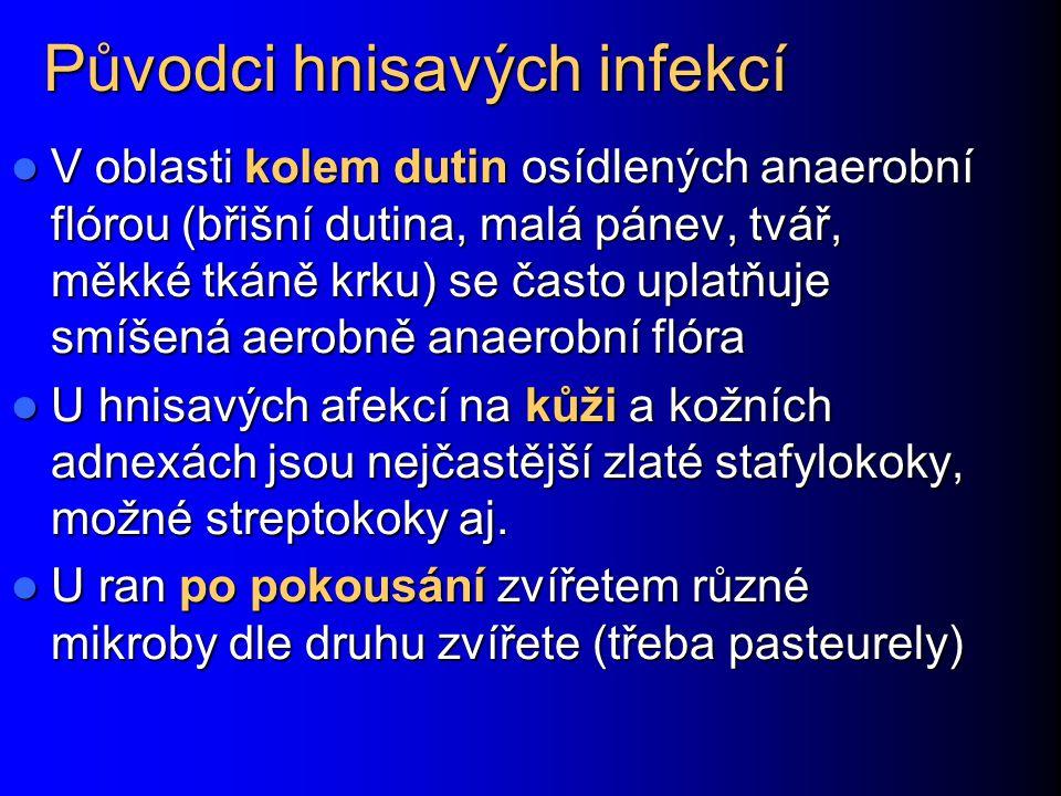 Původci hnisavých infekcí