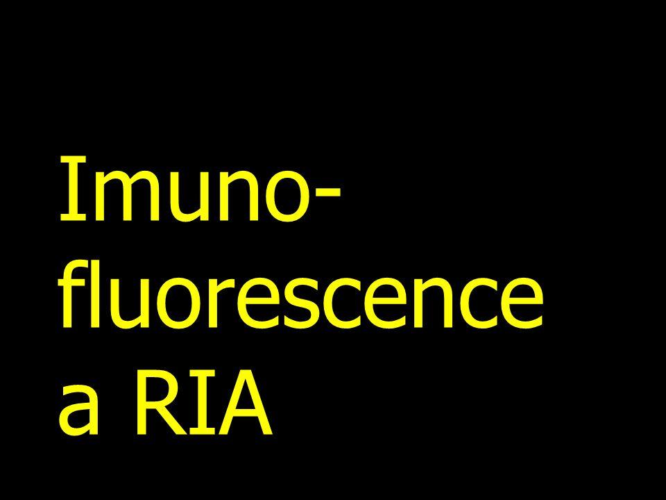 Imuno-fluorescence a RIA