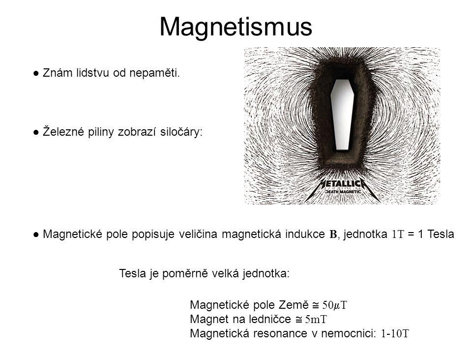 Magnetismus ● Znám lidstvu od nepaměti.