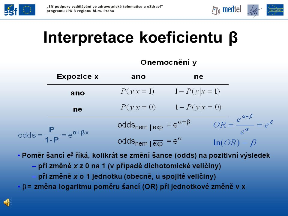 Interpretace koeficientu β