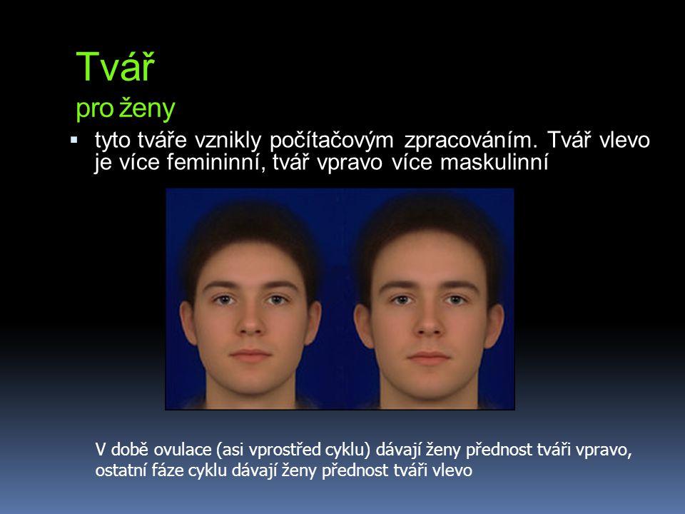 Tvář pro ženy tyto tváře vznikly počítačovým zpracováním. Tvář vlevo je více femininní, tvář vpravo více maskulinní.
