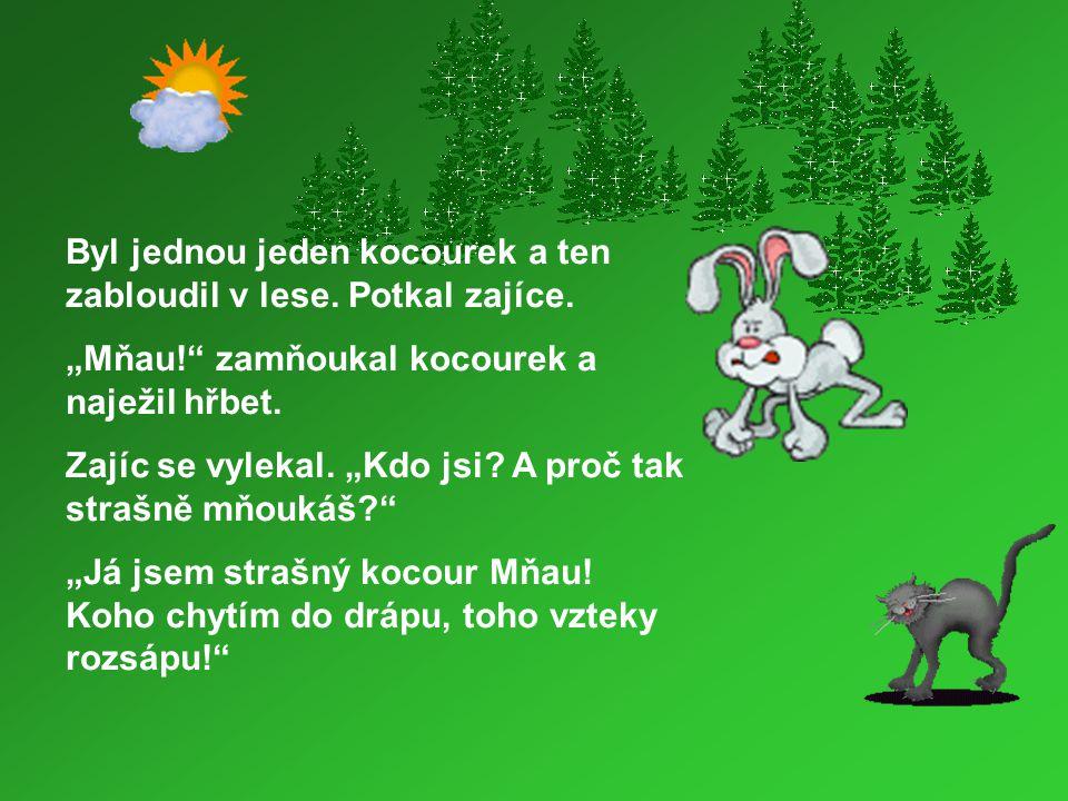 Byl jednou jeden kocourek a ten zabloudil v lese. Potkal zajíce.