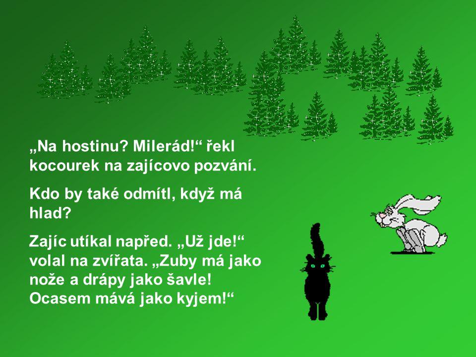 """""""Na hostinu Milerád! řekl kocourek na zajícovo pozvání."""