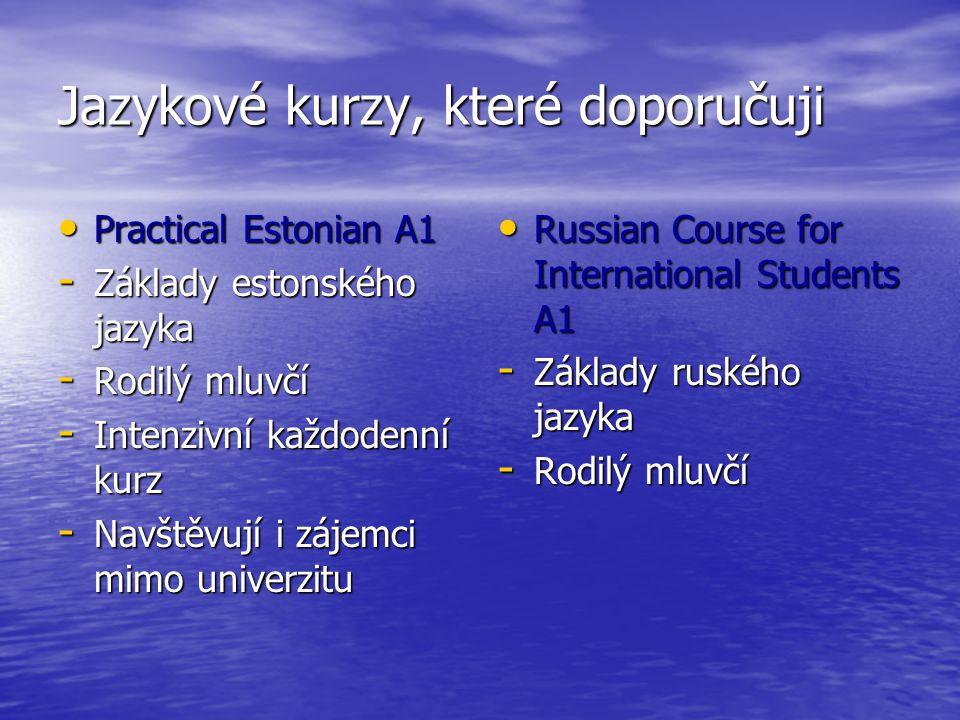 Jazykové kurzy, které doporučuji