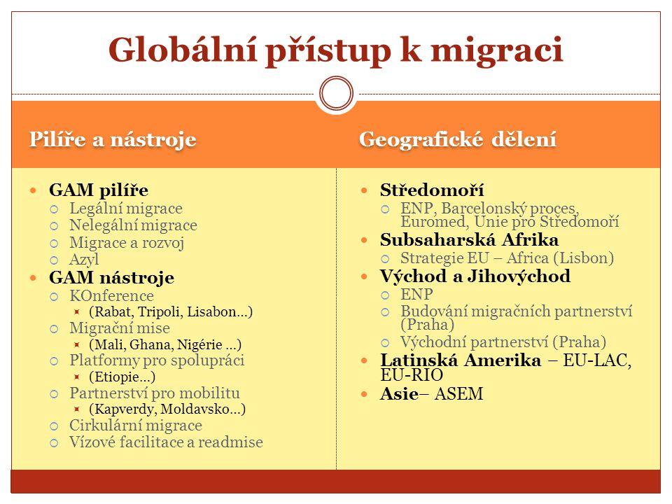 Globální přístup k migraci