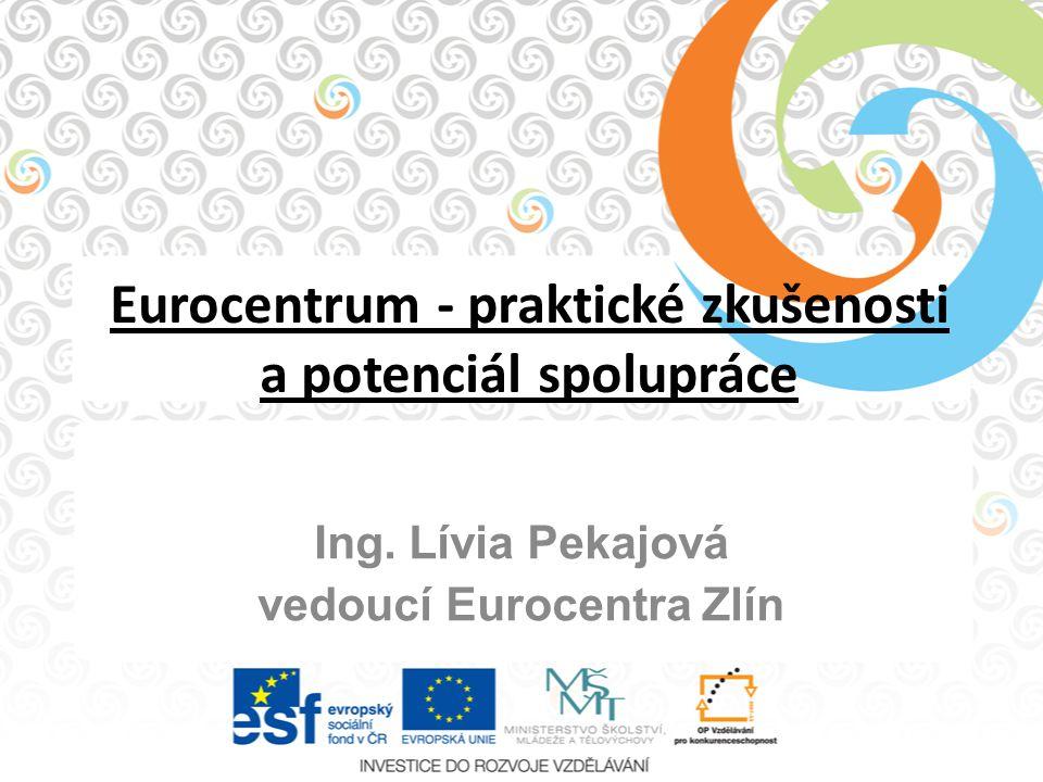 Eurocentrum - praktické zkušenosti a potenciál spolupráce