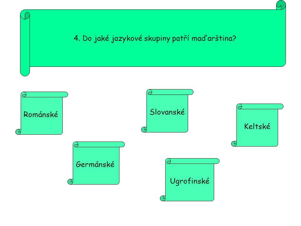 4. Do jaké jazykové skupiny patří maďarština