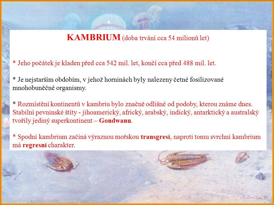 KAMBRIUM (doba trvání cca 54 milionů let)