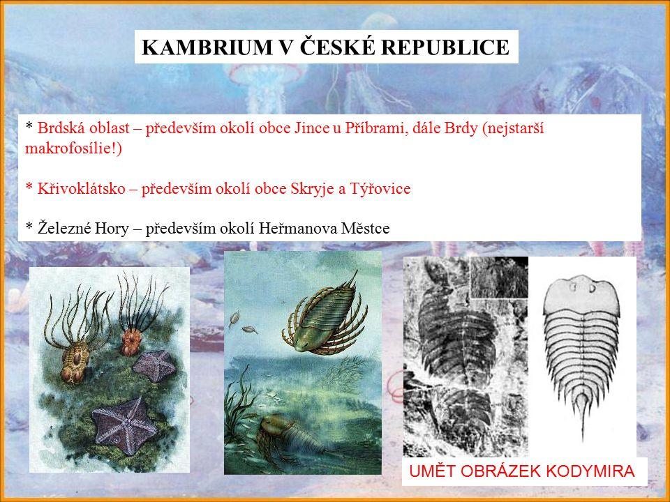 KAMBRIUM V ČESKÉ REPUBLICE