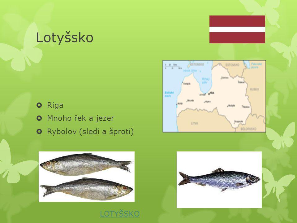 Lotyšsko Riga Mnoho řek a jezer Rybolov (sledi a šproti) LOTYŠSKO