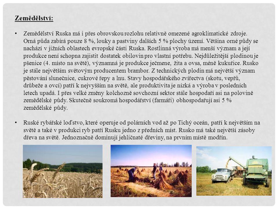 Zemědělství: