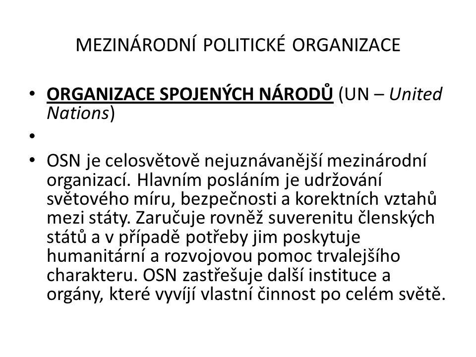 MEZINÁRODNÍ POLITICKÉ ORGANIZACE