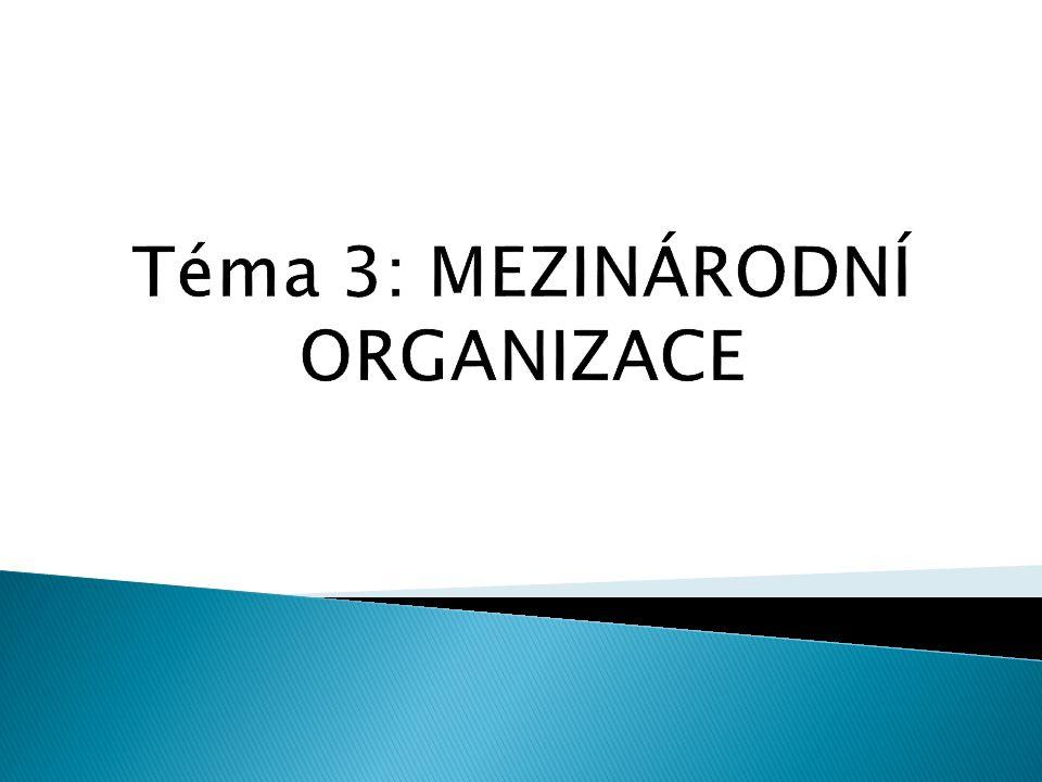 Téma 3: MEZINÁRODNÍ ORGANIZACE