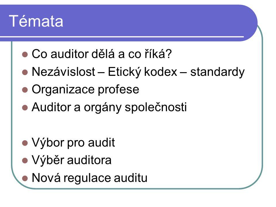Témata Co auditor dělá a co říká