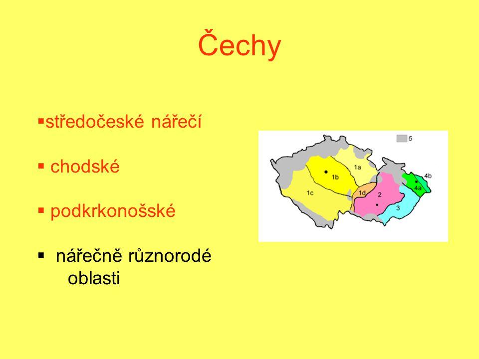 Čechy středočeské nářečí chodské podkrkonošské nářečně různorodé