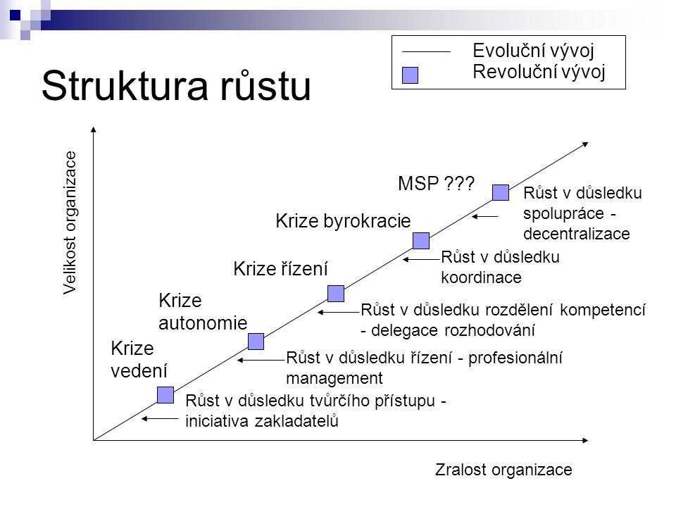 Struktura růstu Evoluční vývoj Revoluční vývoj MSP