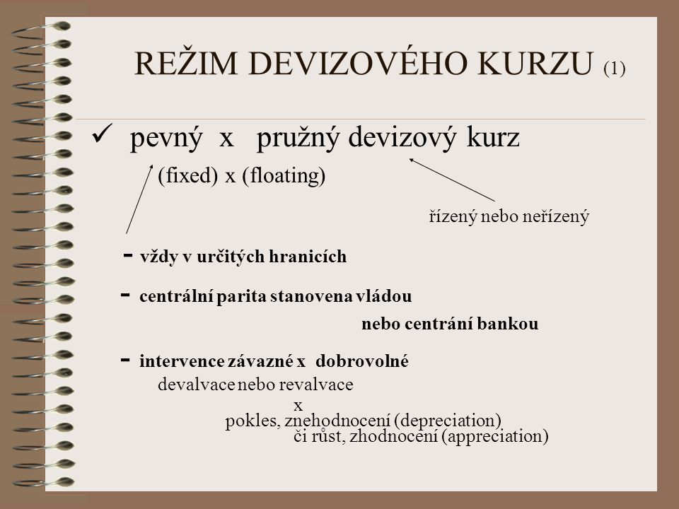 REŽIM DEVIZOVÉHO KURZU (1)