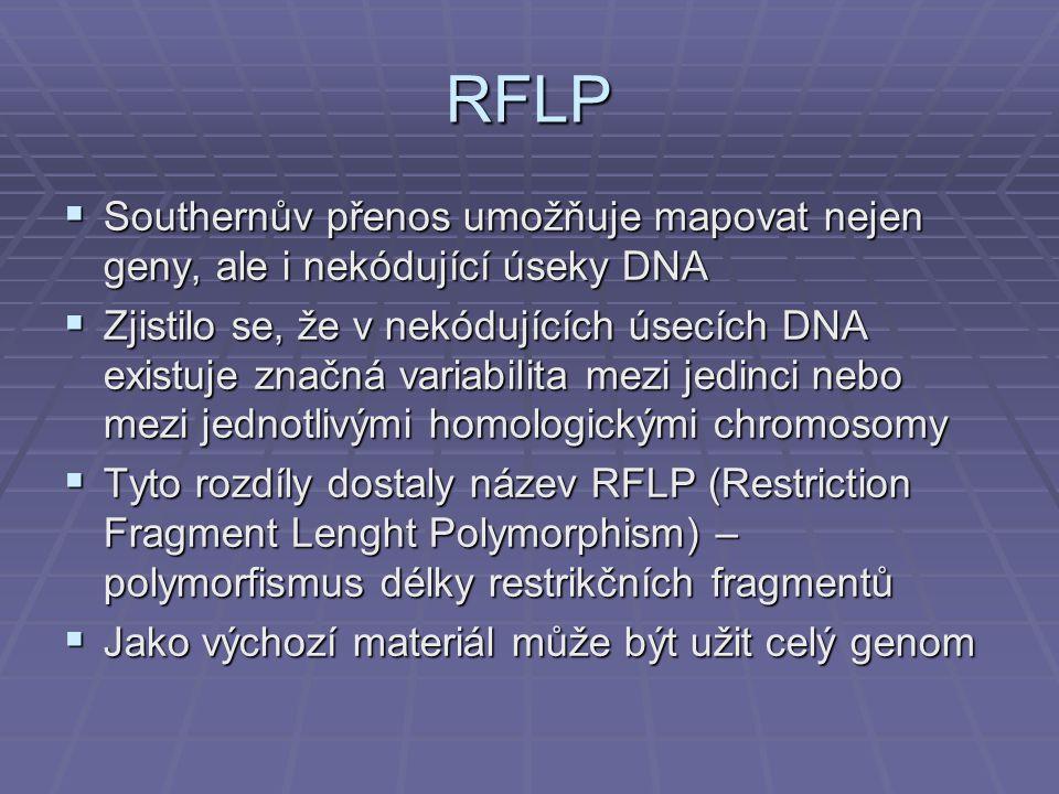 RFLP Southernův přenos umožňuje mapovat nejen geny, ale i nekódující úseky DNA.
