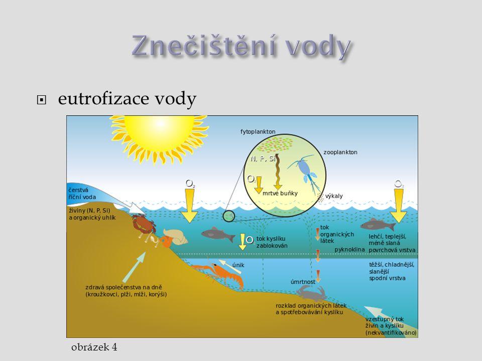Znečištění vody eutrofizace vody obrázek 4