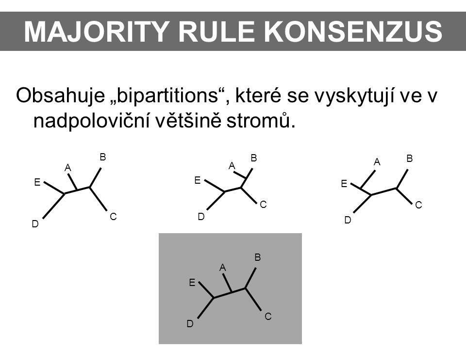 MAJORITY RULE KONSENZUS