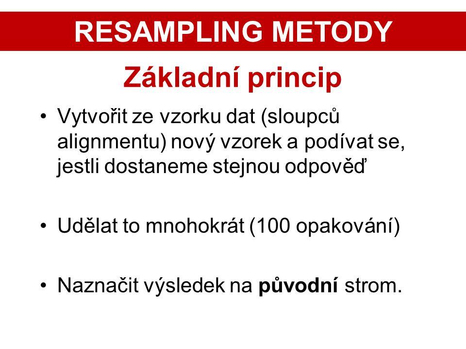 RESAMPLING METODY Základní princip
