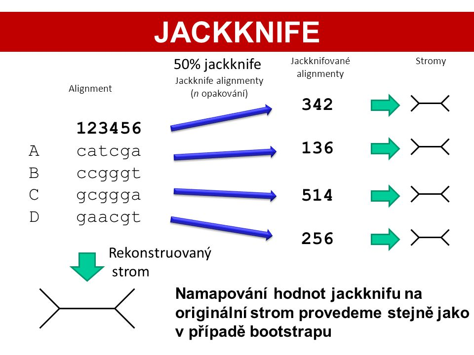 JACKKNIFE 342 123456 A catcga 136 B ccgggt C gcggga D gaacgt 514 256
