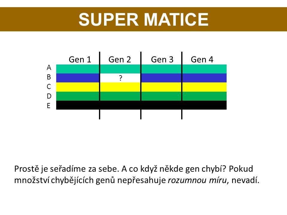 SUPER MATICE Gen 1 Gen 2 Gen 3 Gen 4