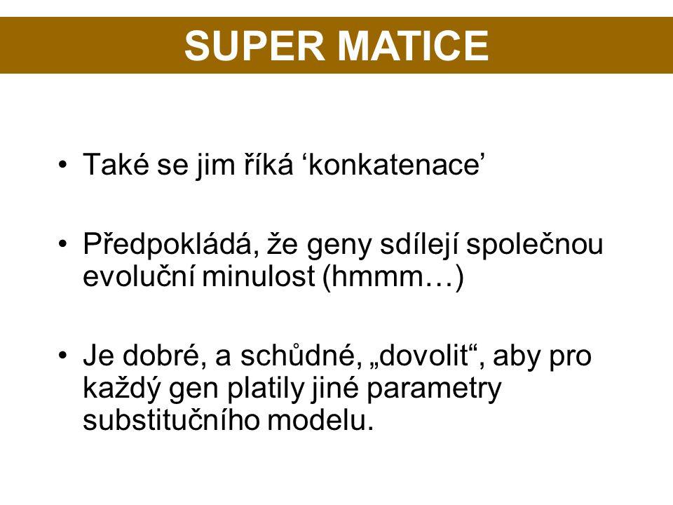 SUPER MATICE Také se jim říká 'konkatenace'