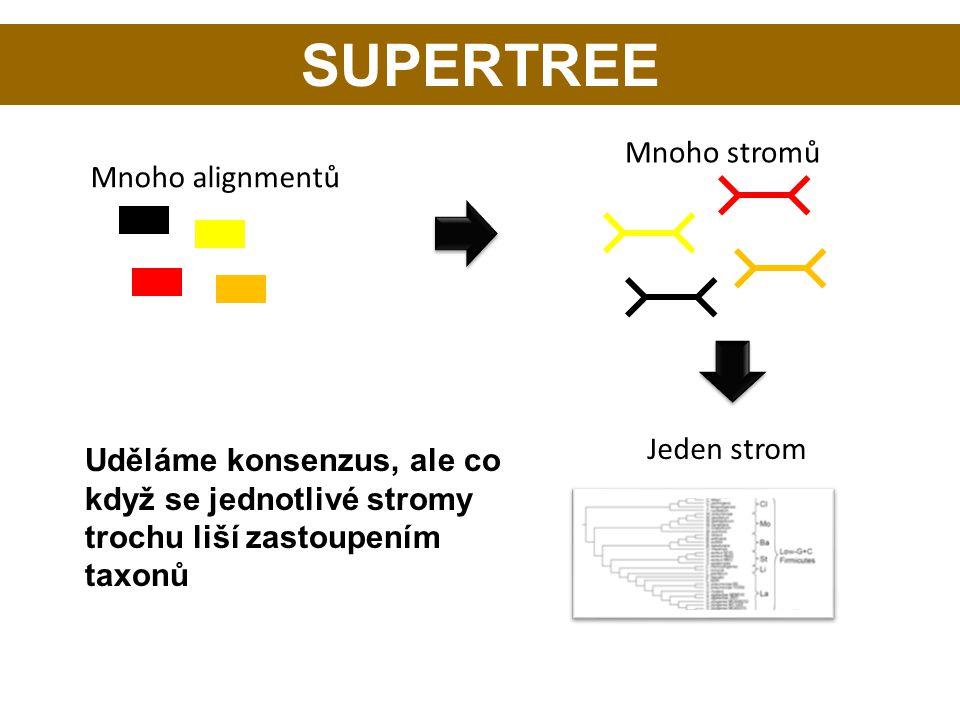 SUPERTREE Mnoho stromů Mnoho alignmentů Jeden strom