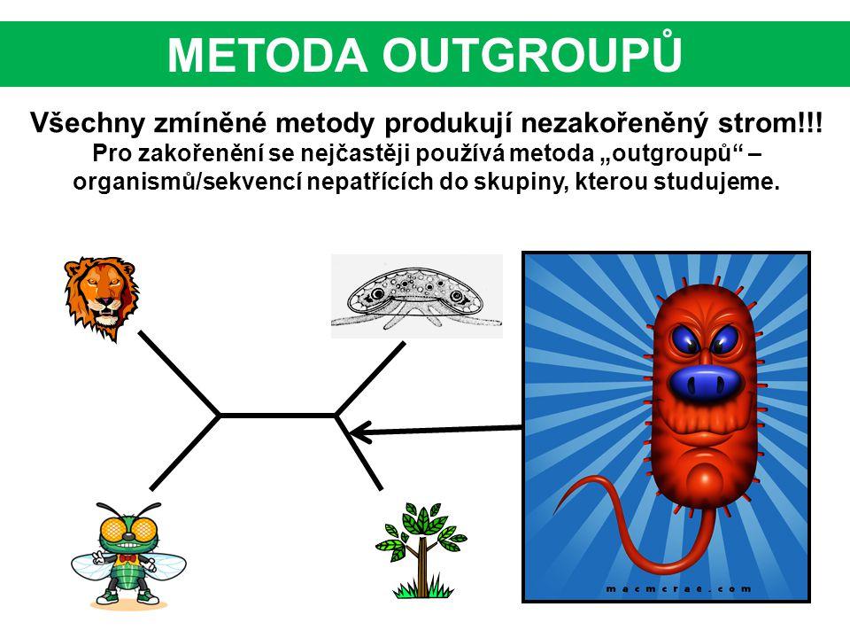 METODA OUTGROUPŮ