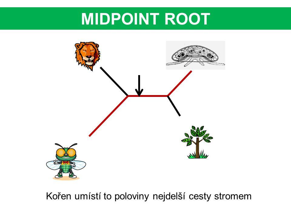 MIDPOINT ROOT Kořen umístí to poloviny nejdelší cesty stromem