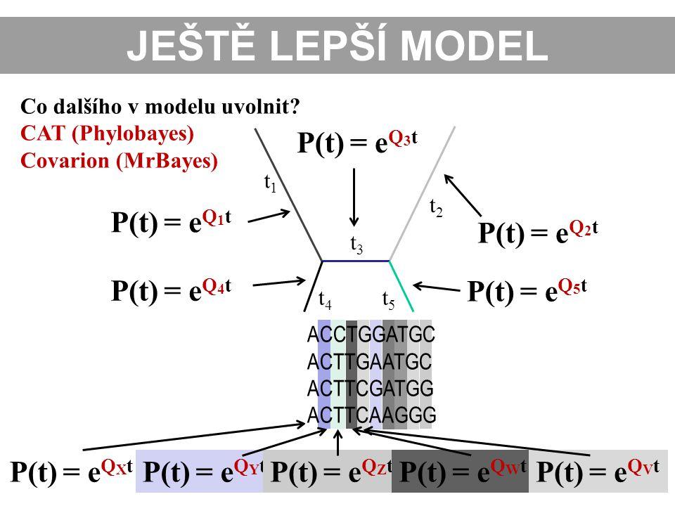 JEŠTĚ LEPŠÍ MODEL P(t) = eQ3t P(t) = eQ1t P(t) = eQ2t P(t) = eQ4t