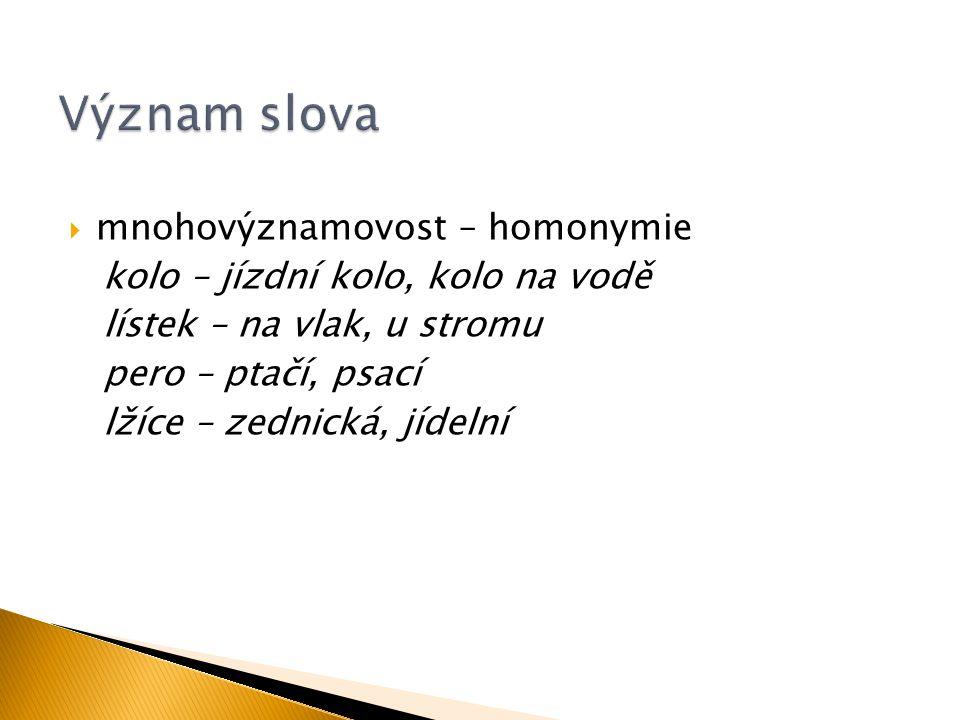 Význam slova mnohovýznamovost – homonymie