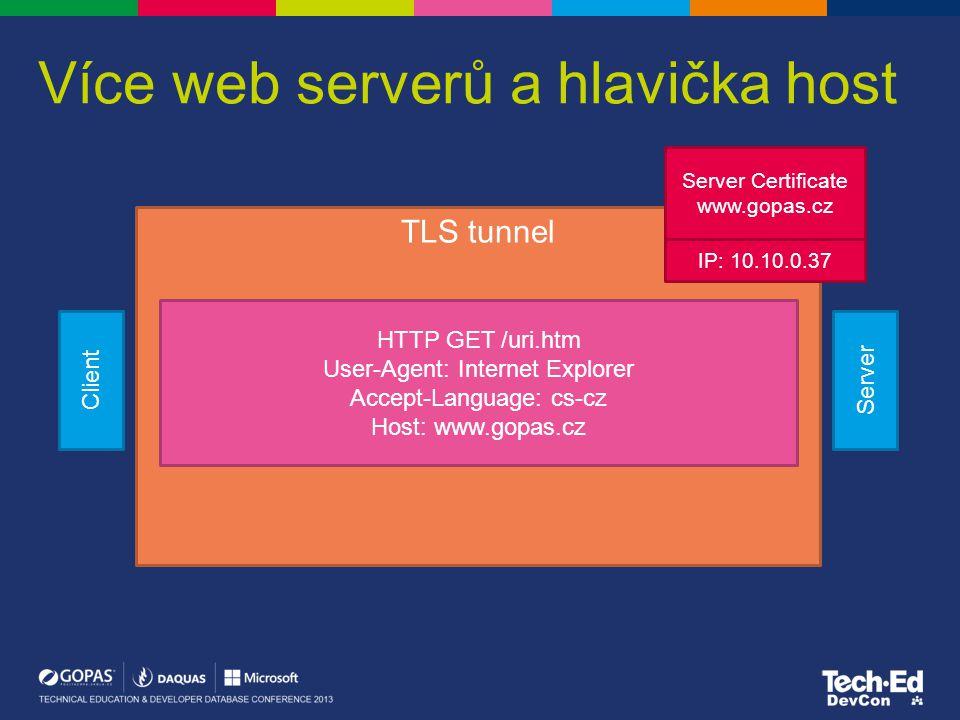 Více web serverů a hlavička host