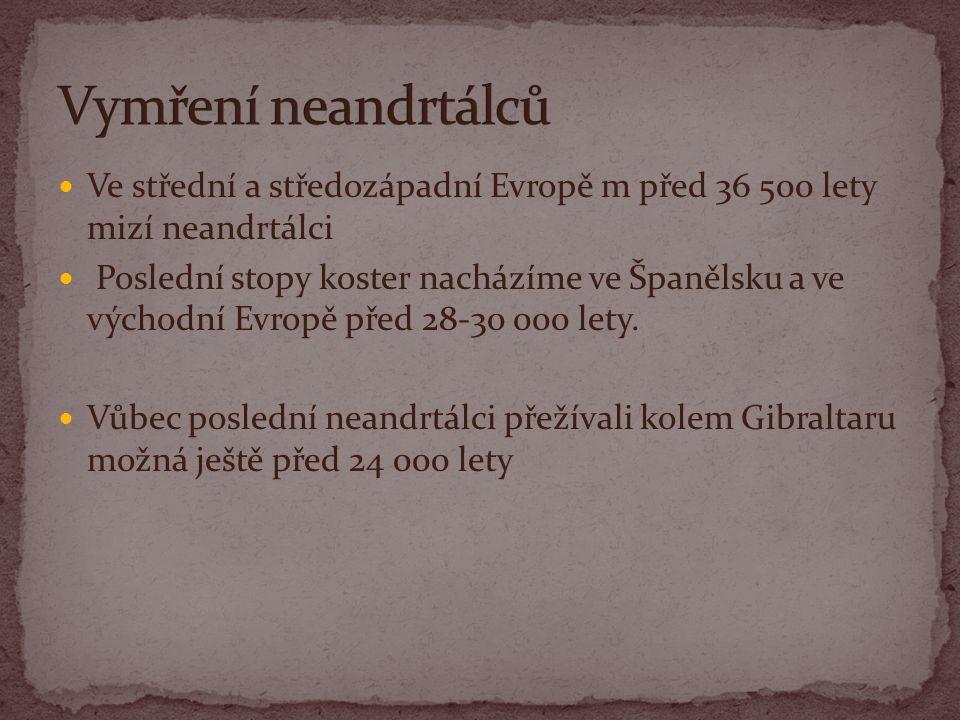 Vymření neandrtálců Ve střední a středozápadní Evropě m před 36 500 lety mizí neandrtálci.