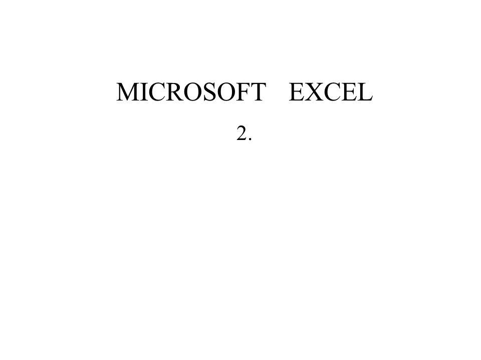 MICROSOFT EXCEL 2.