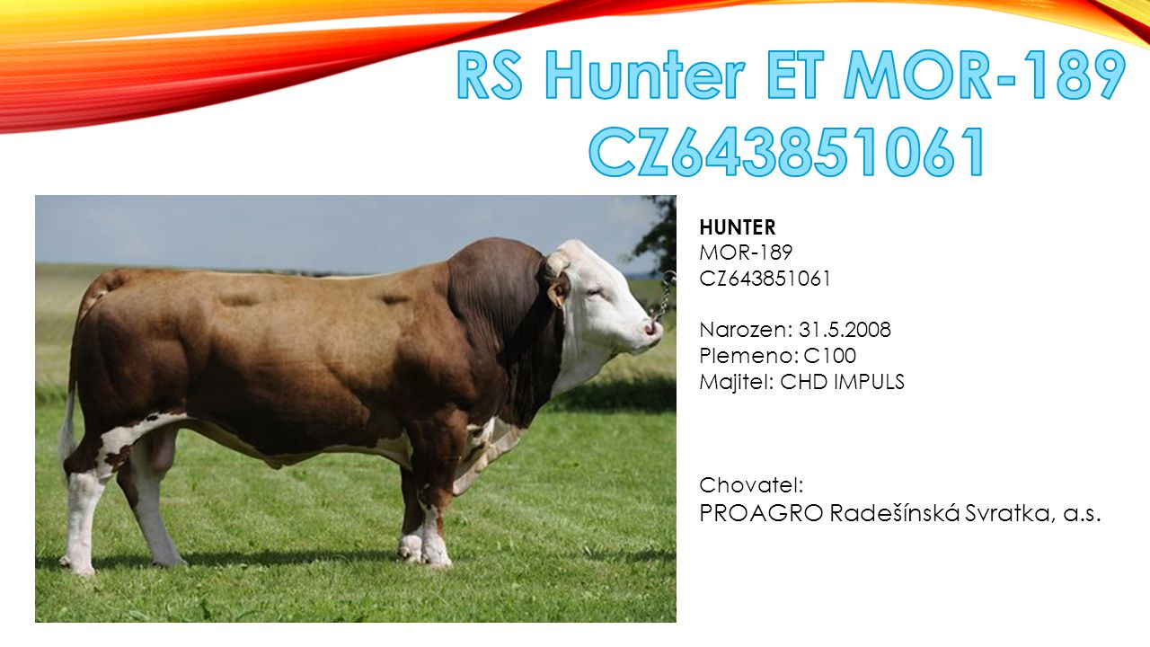 RS Hunter ET MOR-189 CZ643851061 PROAGRO Radešínská Svratka, a.s.