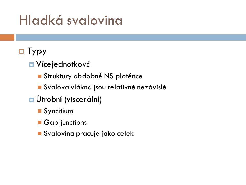Hladká svalovina Typy Vícejednotková Útrobní (viscerální)
